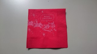 SC-24 IR raindeer folded_R